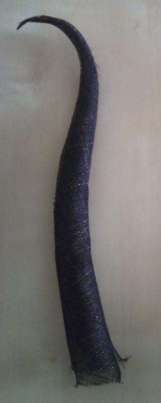 Horn 1